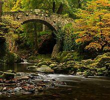 Foleys Bridge, Tollymore Forest Park by Adrian McGlynn
