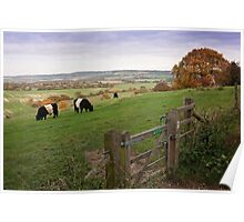 Ivinghoe Beacon Poster