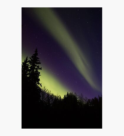 Aurora Painting the Sky Photographic Print