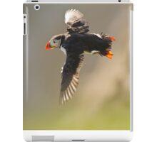 Flying Shetlands Puffin iPad Case/Skin