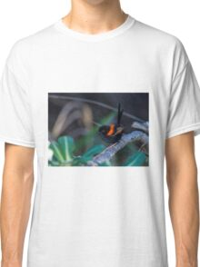 Red Backed Fairywren Classic T-Shirt