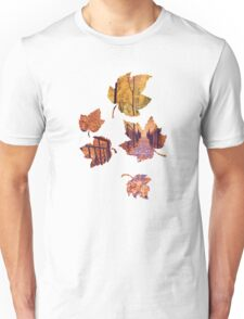 Stairs in the Fall Unisex T-Shirt