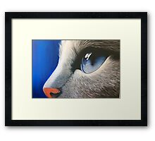 Bright Eyes.  Framed Print