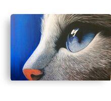 Bright Eyes.  Canvas Print