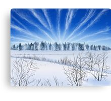 Winter Countryside Field Canvas Print