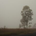 Man Walking in the Mist by mindy23