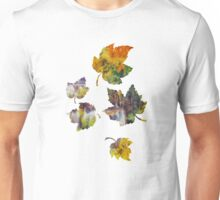 Autumn landscape with waterfall Unisex T-Shirt