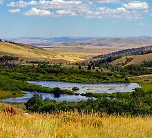 Wyoming Vista by Harry Oldmeadow