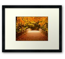 Bridging the colors by Tracy Jule Framed Print
