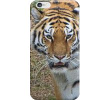 Amur Tiger iPhone Case/Skin