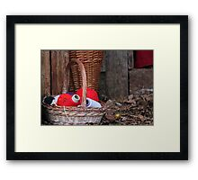 balls of wool in basket Framed Print