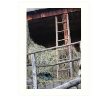 old barn Art Print