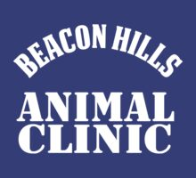 BEACON HILLS ANIMAL CLINIC by hanelyn