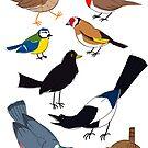 Birds of a feather by placidplaguerat