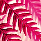 Nature Pattern # 1 - Fern (Red Pink) by Kitsmumma