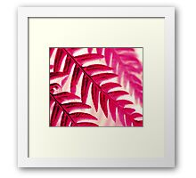 Nature Pattern - Fern (Red Pink) Framed Print