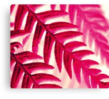 Nature Pattern # 1 - Fern (Red Pink) Canvas Print