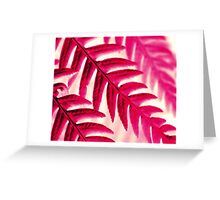 Nature Pattern # 1 - Fern (Red Pink) Greeting Card