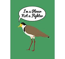 I'm a Plover Not a Fighter Photographic Print