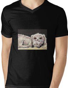 Falkor the Luck Dragon. Mens V-Neck T-Shirt