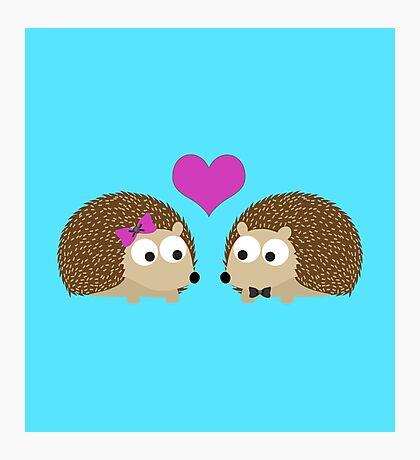 Hedgehog Love Photographic Print