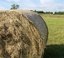 hay in the countryside by spetenfia