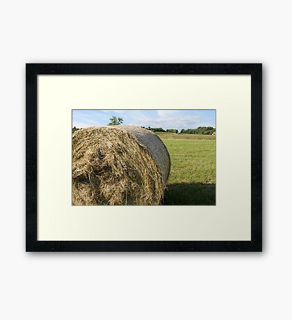 hay in the countryside Framed Print