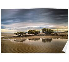 Mangroves at Grantville, Victoria Poster