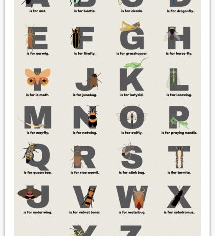 Insect Alphabet Sticker