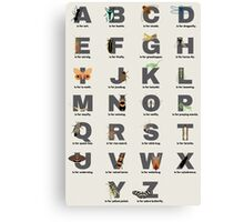 Insect Alphabet Canvas Print