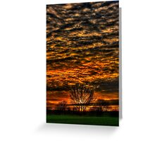 Sunset over Willow Park. Greeting Card