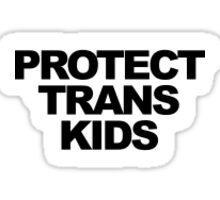 PROTECT TRANS KIDS Sticker