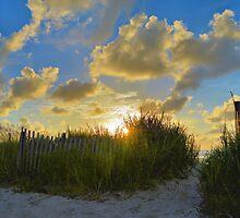 Wish You Were Here by ©Dawne M. Dunton