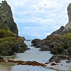 Low Tide at Bandon Beach by gcampbell