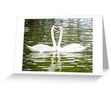 Two White Swans (Cygnus olor) head to head forming a heart shape Greeting Card