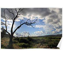 Ranges - Alice Springs, Australia Poster