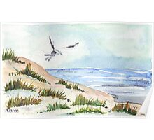 The Seagull and the beach Poster