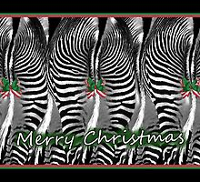 Zebra Christmas by CarolM