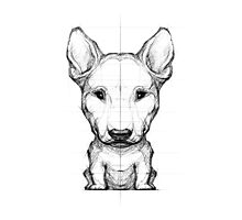 Bull Terrier Pencil Sketch Photographic Print