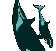 Killer Whales by kwg2200