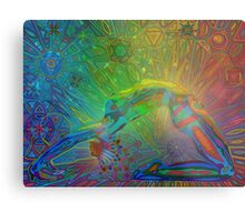 bandhasana digital - 2014 Metal Print