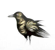 raven  by federico cortese