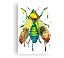 Watercolor bug Canvas Print