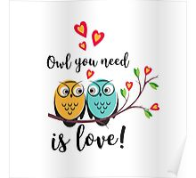 vector love couple owls with hearts  Poster
