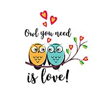 vector love couple owls with hearts  Photographic Print