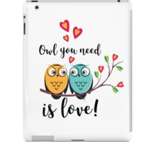 vector love couple owls with hearts  iPad Case/Skin