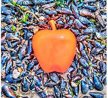 Apple on the Beach - part 3 Photographic Print