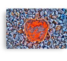Apple on the Beach - part 4 Canvas Print