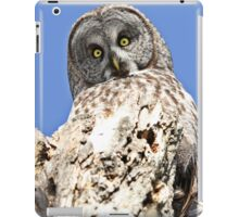 The world seen from above iPad Case/Skin