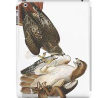 Red-tailed Hawk - John James Audubon  iPad Case/Skin
